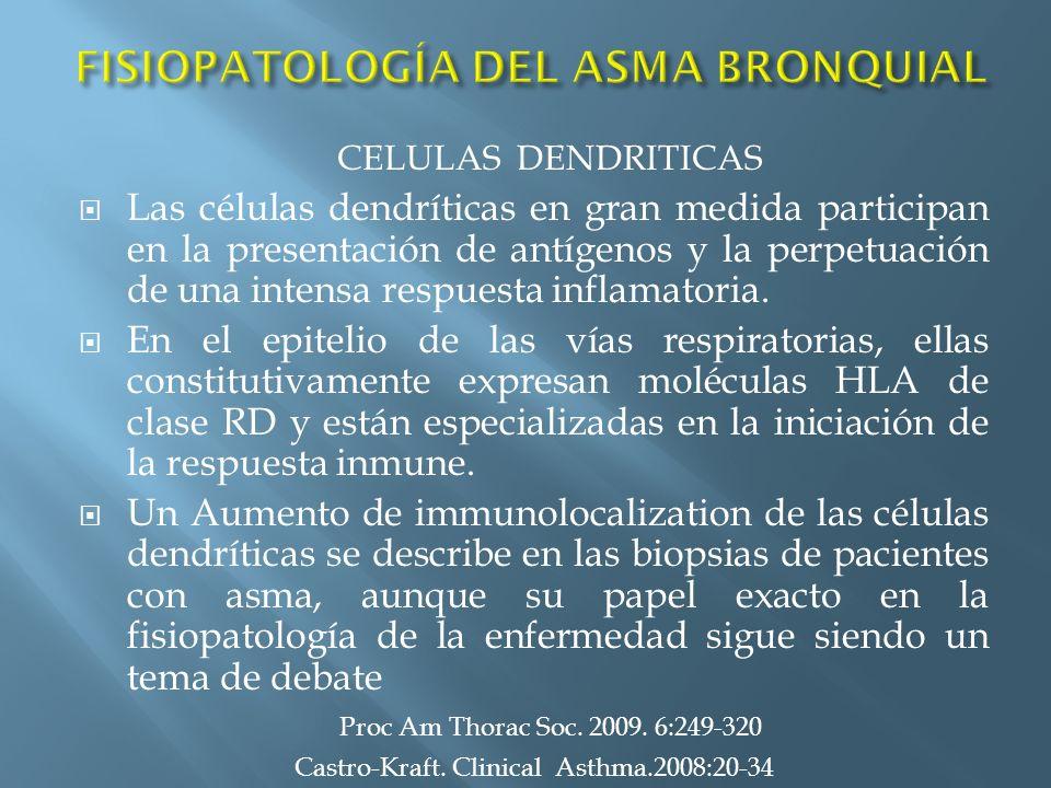 Las células dendríticas en gran medida participan en la presentación de antígenos y la perpetuación de una intensa respuesta inflamatoria. En el epite