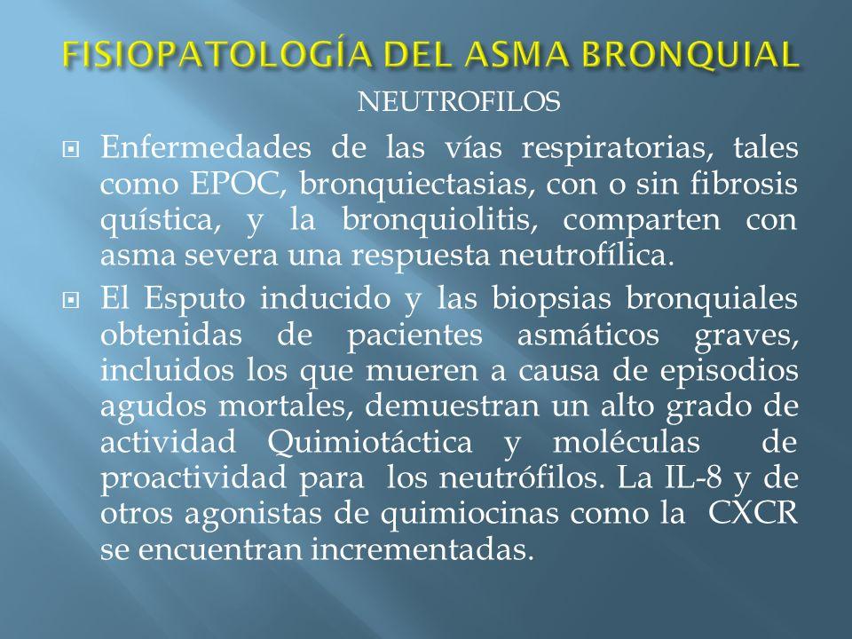 Enfermedades de las vías respiratorias, tales como EPOC, bronquiectasias, con o sin fibrosis quística, y la bronquiolitis, comparten con asma severa u