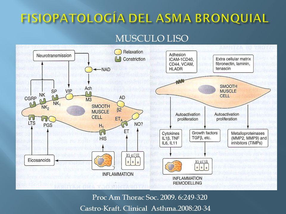 Castro-Kraft. Clinical Asthma.2008:20-34 MUSCULO LISO Proc Am Thorac Soc. 2009. 6:249-320