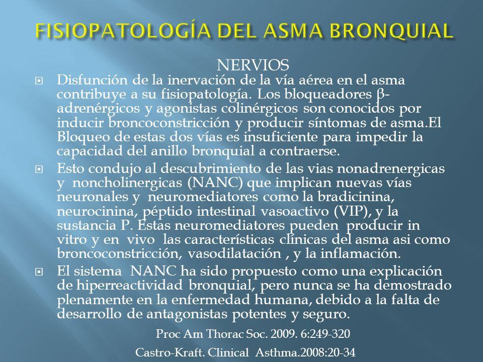 Disfunción de la inervación de la vía aérea en el asma contribuye a su fisiopatología. Los bloqueadores β - adrenérgicos y agonistas colinérgicos son