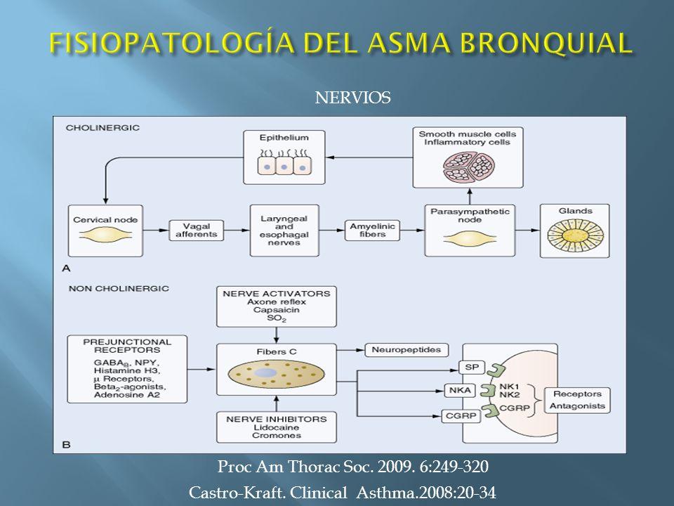 Castro-Kraft. Clinical Asthma.2008:20-34 NERVIOS Proc Am Thorac Soc. 2009. 6:249-320