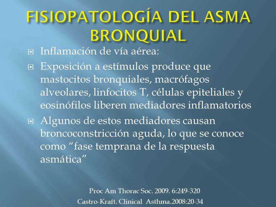 Inflamación de vía aérea: Exposición a estímulos produce que mastocitos bronquiales, macrófagos alveolares, linfocitos T, células epiteliales y eosinó