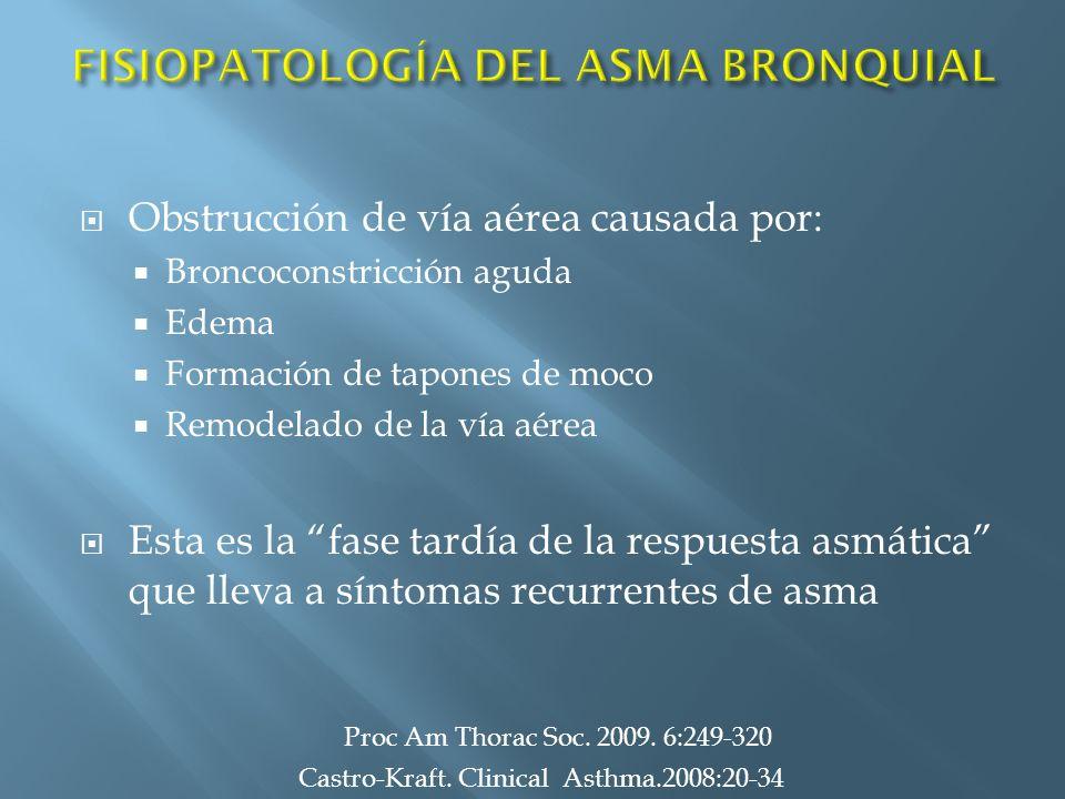 Obstrucción de vía aérea causada por: Broncoconstricción aguda Edema Formación de tapones de moco Remodelado de la vía aérea Esta es la fase tardía de