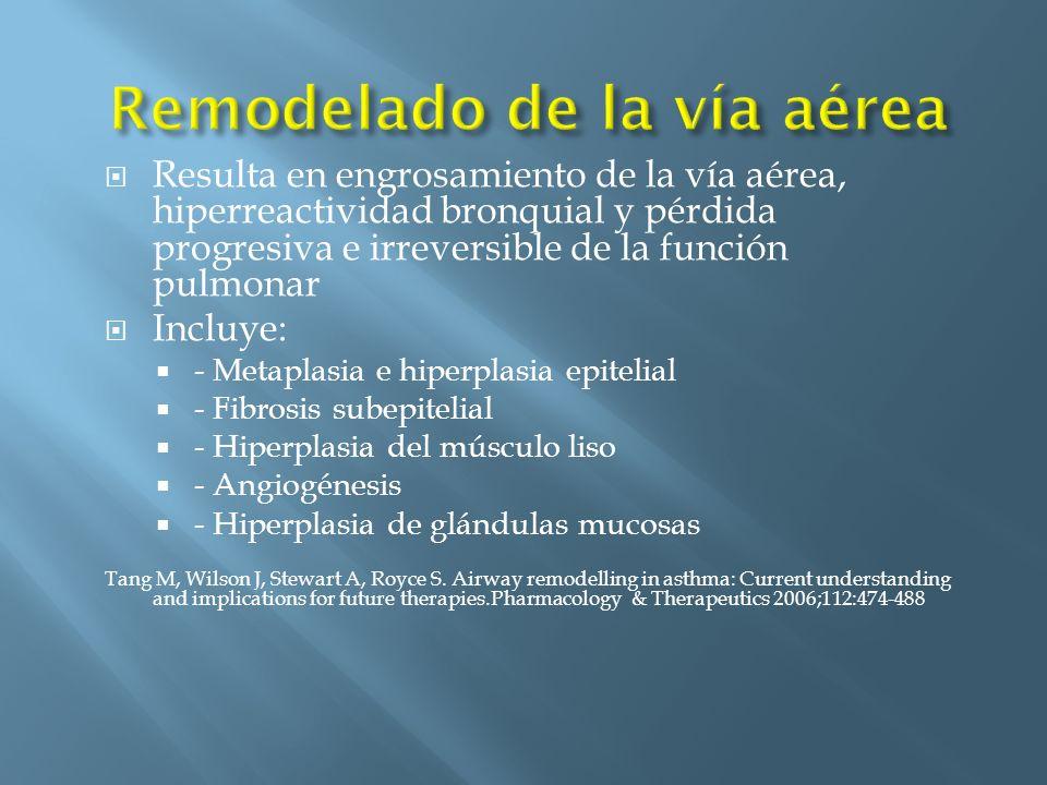 Resulta en engrosamiento de la vía aérea, hiperreactividad bronquial y pérdida progresiva e irreversible de la función pulmonar Incluye: - Metaplasia