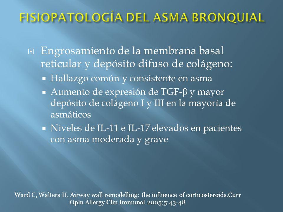 Engrosamiento de la membrana basal reticular y depósito difuso de colágeno: Hallazgo común y consistente en asma Aumento de expresión de TGF- y mayor