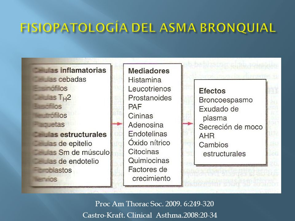 Castro-Kraft. Clinical Asthma.2008:20-34 MACROFAGOS Proc Am Thorac Soc. 2009. 6:249-320
