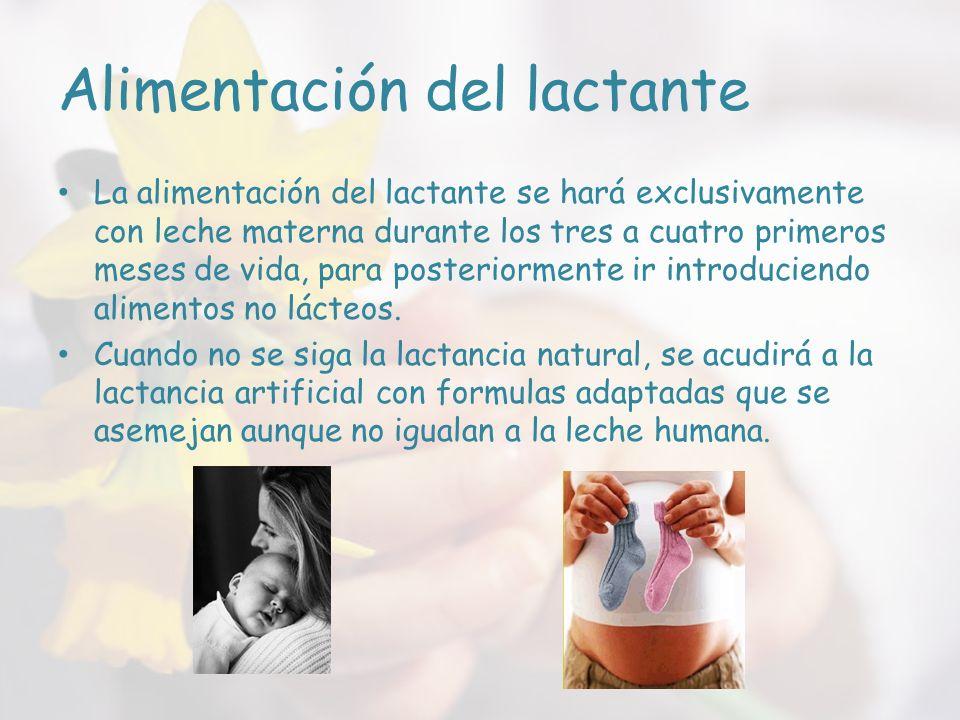 Alimentación del lactante La alimentación del lactante se hará exclusivamente con leche materna durante los tres a cuatro primeros meses de vida, para posteriormente ir introduciendo alimentos no lácteos.
