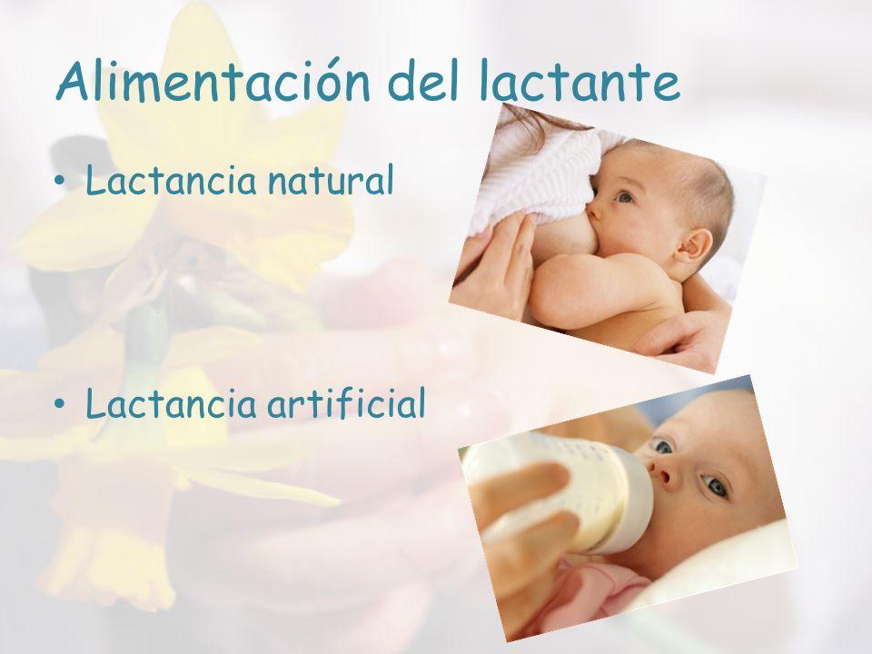 Alimentación del lactante Lactancia natural Lactancia artificial