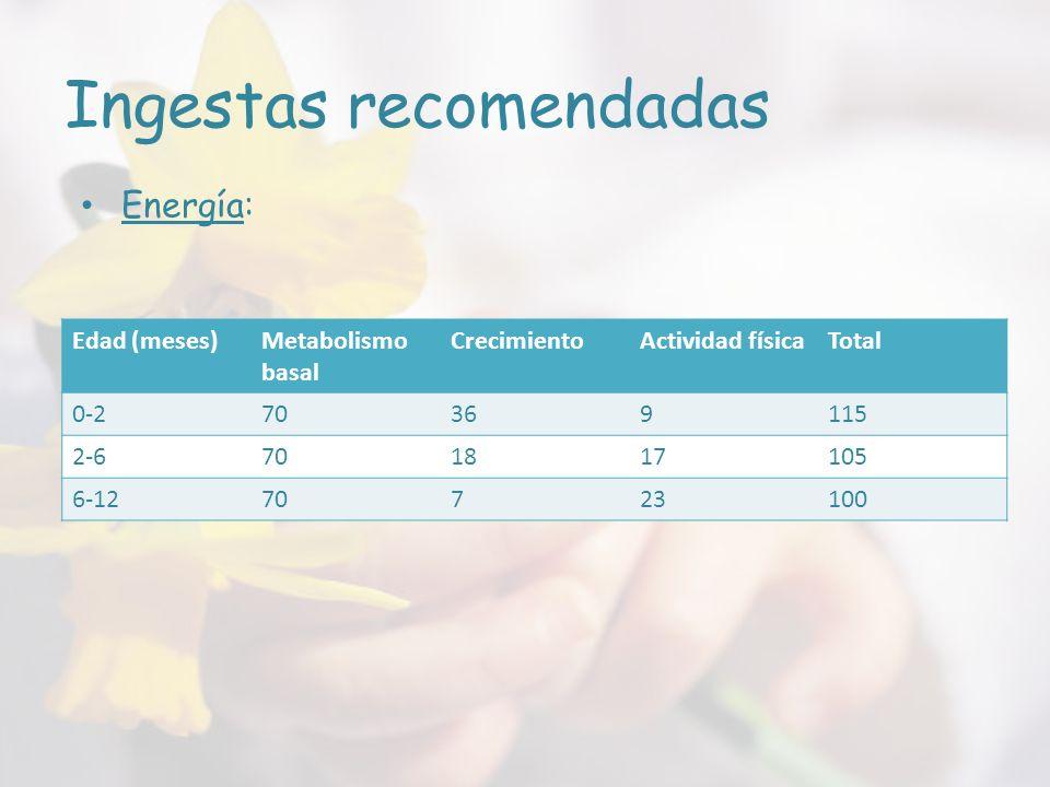 Ingestas recomendadas Edad (meses)Metabolismo basal CrecimientoActividad físicaTotal 0-270369115 2-6701817105 6-1270723100 Energía: