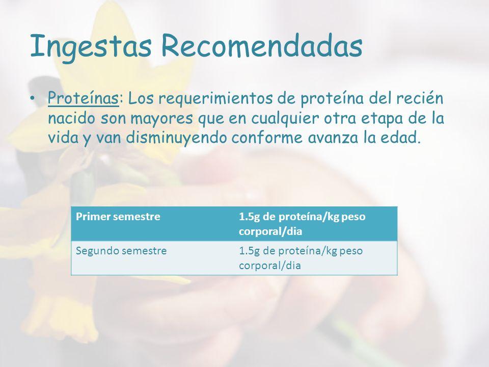 Ingestas Recomendadas Proteínas: Los requerimientos de proteína del recién nacido son mayores que en cualquier otra etapa de la vida y van disminuyendo conforme avanza la edad.
