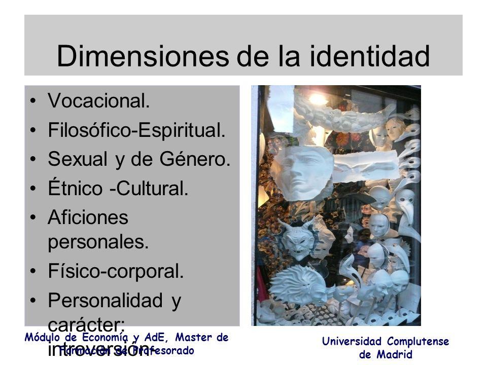Dimensiones de la identidad Vocacional. Filosófico-Espiritual. Sexual y de Género. Étnico -Cultural. Aficiones personales. Físico-corporal. Personalid