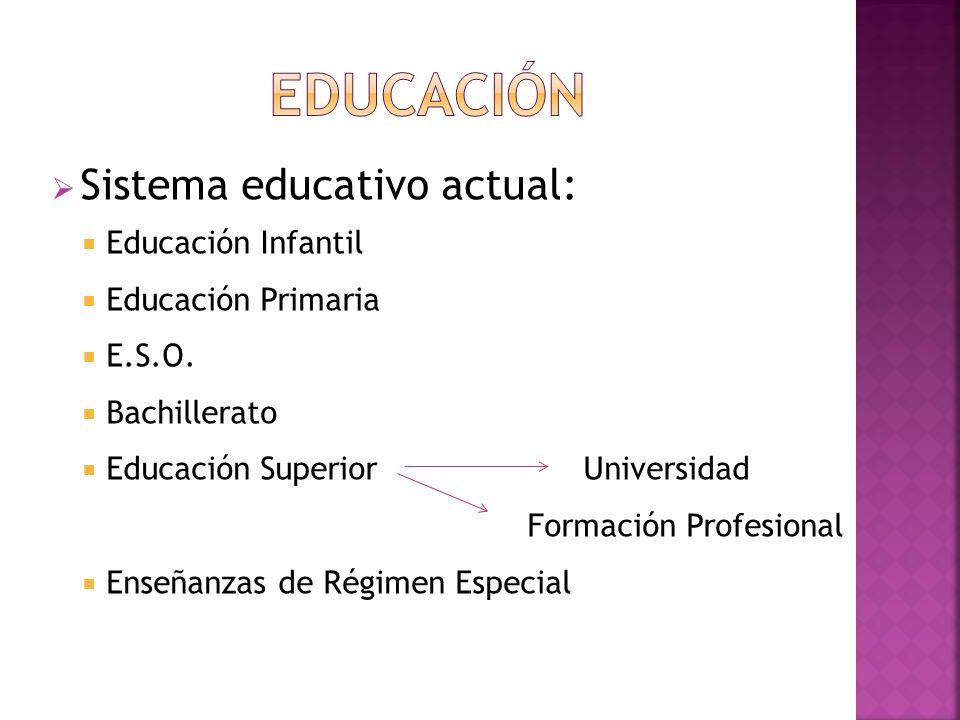 Sistema educativo actual: Educación Infantil Educación Primaria E.S.O. Bachillerato Educación Superior Universidad Formación Profesional Enseñanzas de