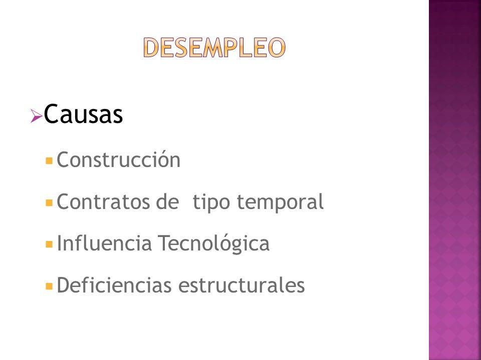 Causas Construcción Contratos de tipo temporal Influencia Tecnológica Deficiencias estructurales