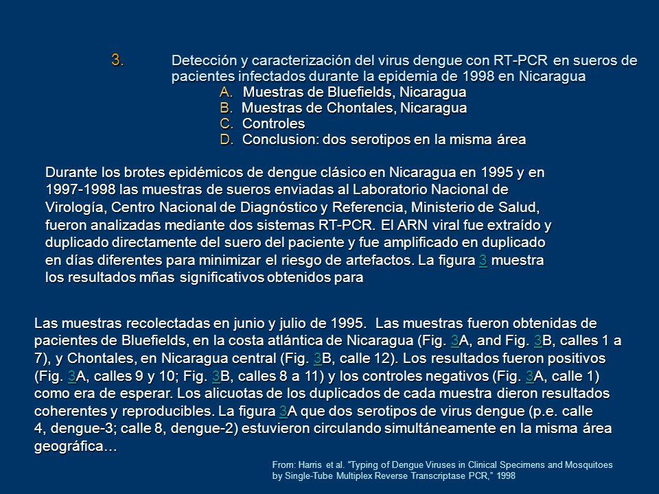 3. Detección y caracterización del virus dengue con RT-PCR en sueros de pacientes infectados durante la epidemia de 1998 en Nicaragua A.Muestras de Bl