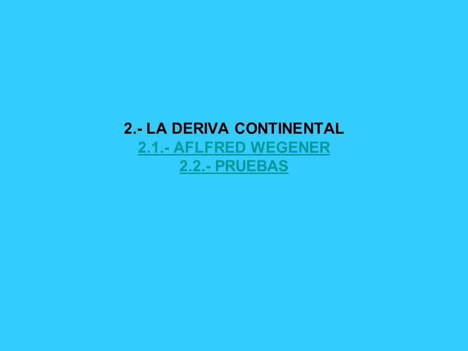 2.- LA DERIVA CONTINENTAL 2.1.- AFLFRED WEGENER 2.2.- PRUEBAS 2.1.- AFLFRED WEGENER 2.2.- PRUEBAS