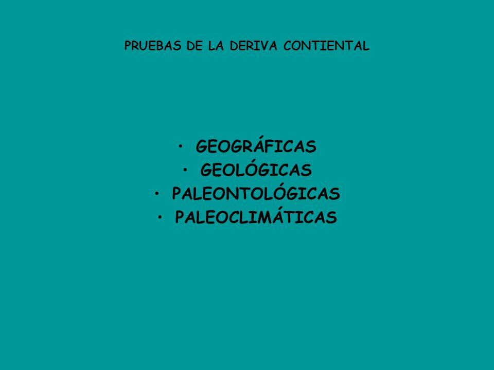 PRUEBAS DE LA DERIVA CONTIENTAL GEOGRÁFICAS GEOLÓGICAS PALEONTOLÓGICAS PALEOCLIMÁTICAS