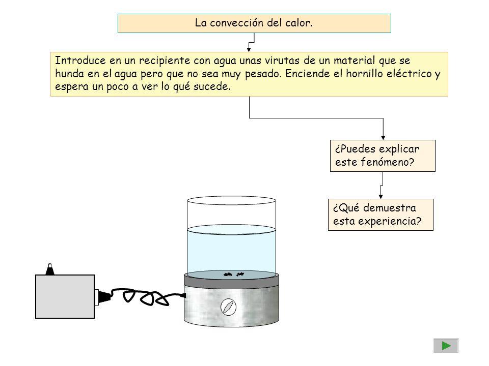 La convección del calor. Introduce en un recipiente con agua unas virutas de un material que se hunda en el agua pero que no sea muy pesado. Enciende