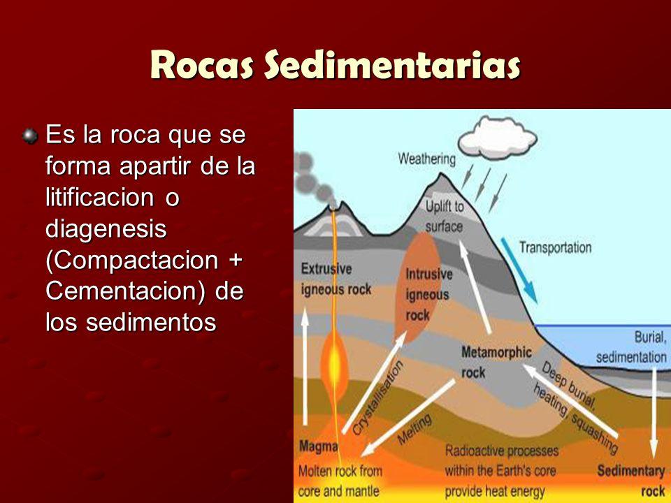 Rocas Sedimentarias Es la roca que se forma apartir de la litificacion o diagenesis (Compactacion + Cementacion) de los sedimentos