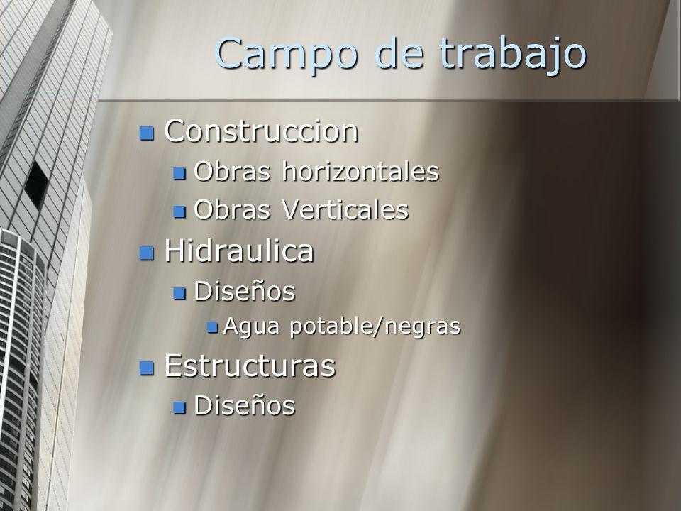 Campo de trabajo Construccion Construccion Obras horizontales Obras horizontales Obras Verticales Obras Verticales Hidraulica Hidraulica Diseños Diseñ