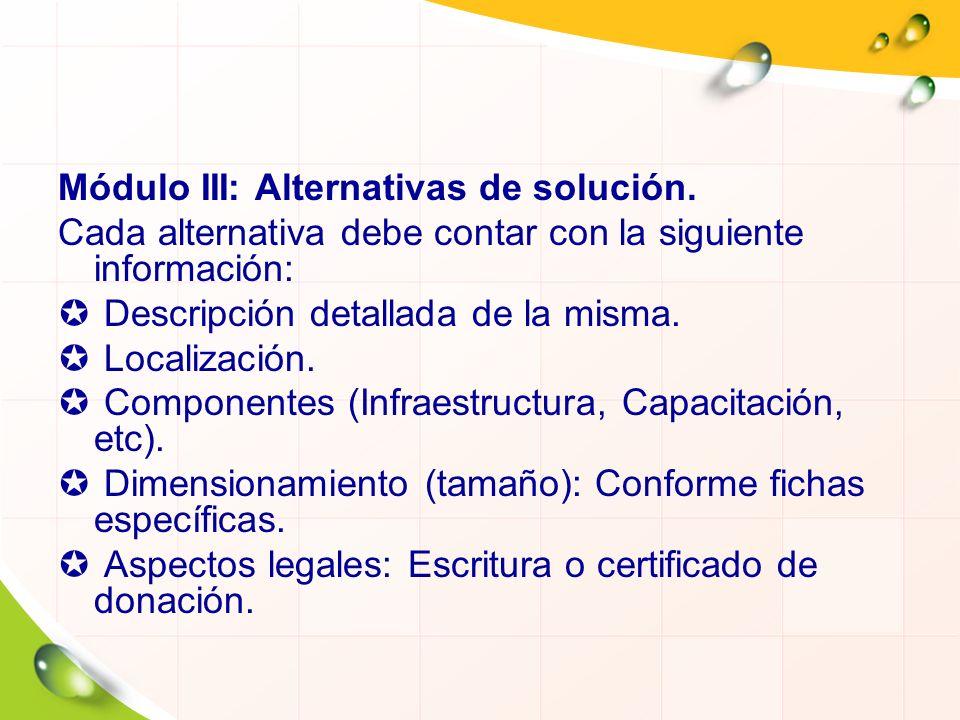 Módulo III: Alternativas de solución. Cada alternativa debe contar con la siguiente información: Descripción detallada de la misma. Localización. Comp