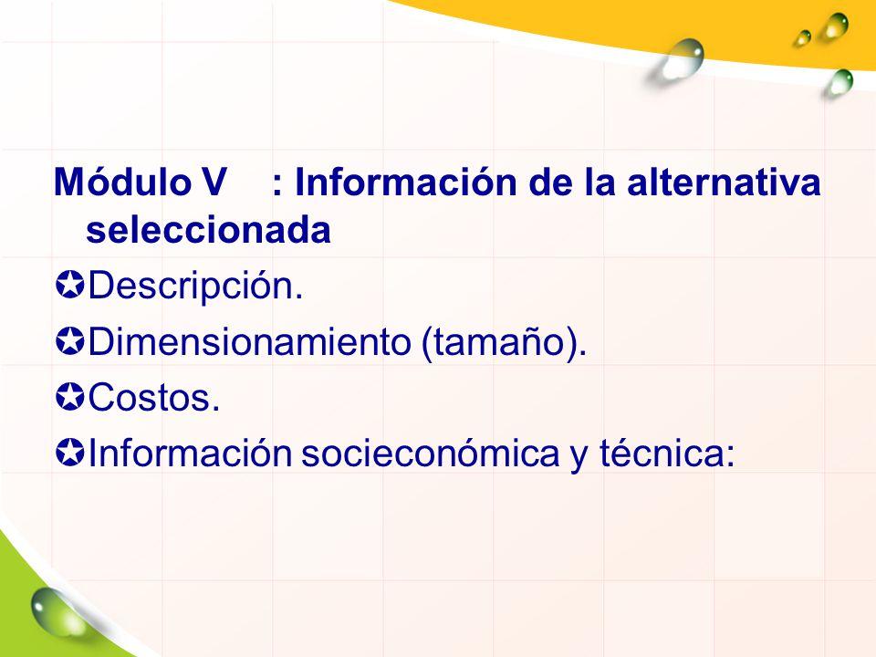 Módulo V : Información de la alternativa seleccionada Descripción. Dimensionamiento (tamaño). Costos. Información socieconómica y técnica: