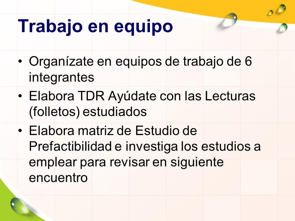 Trabajo en equipo Organízate en equipos de trabajo de 6 integrantes Elabora TDR Ayúdate con las Lecturas (folletos) estudiados Elabora matriz de Estud