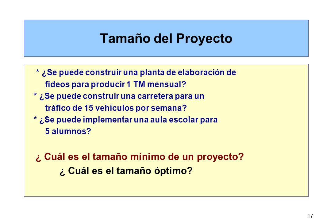 17 Tamaño del Proyecto * ¿Se puede construir una planta de elaboración de fideos para producir 1 TM mensual? * ¿Se puede construir una carretera para