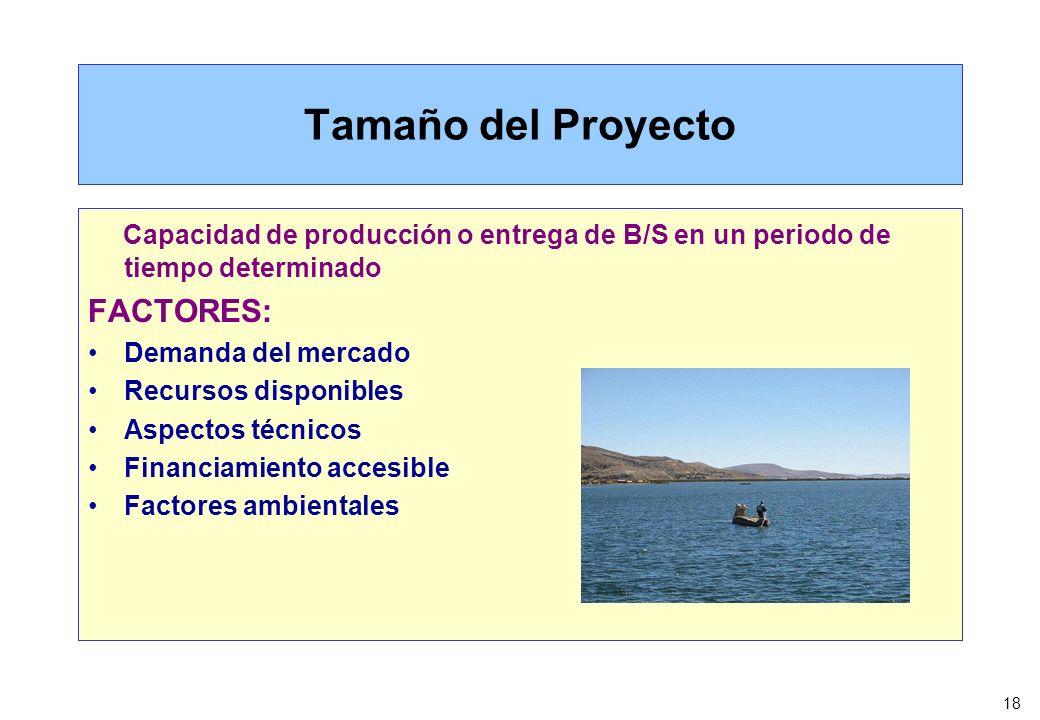 18 Tamaño del Proyecto Capacidad de producción o entrega de B/S en un periodo de tiempo determinado FACTORES: Demanda del mercado Recursos disponibles