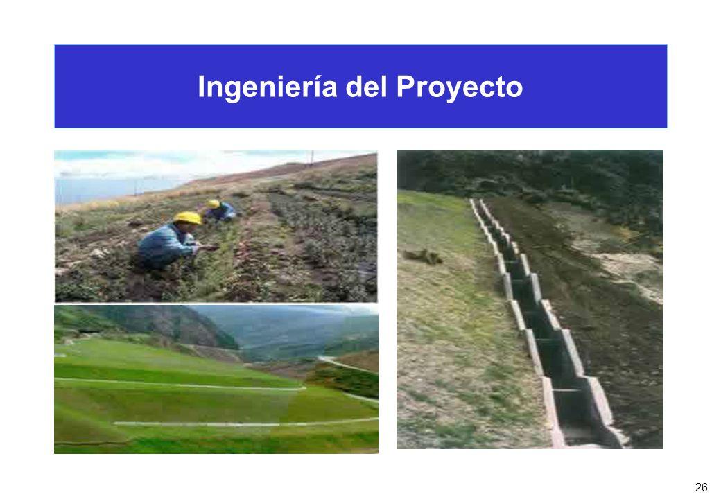 26 Ingeniería del Proyecto