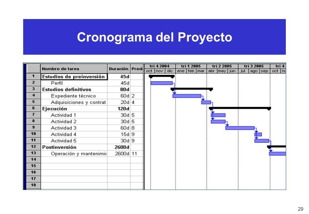 29 Cronograma del Proyecto