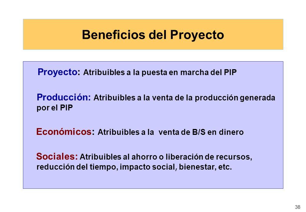 38 Beneficios del Proyecto Proyecto: Atribuibles a la puesta en marcha del PIP Producción: Atribuibles a la venta de la producción generada por el PIP