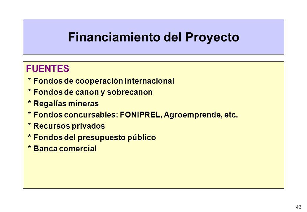 46 Financiamiento del Proyecto FUENTES * Fondos de cooperación internacional * Fondos de canon y sobrecanon * Regalías mineras * Fondos concursables: