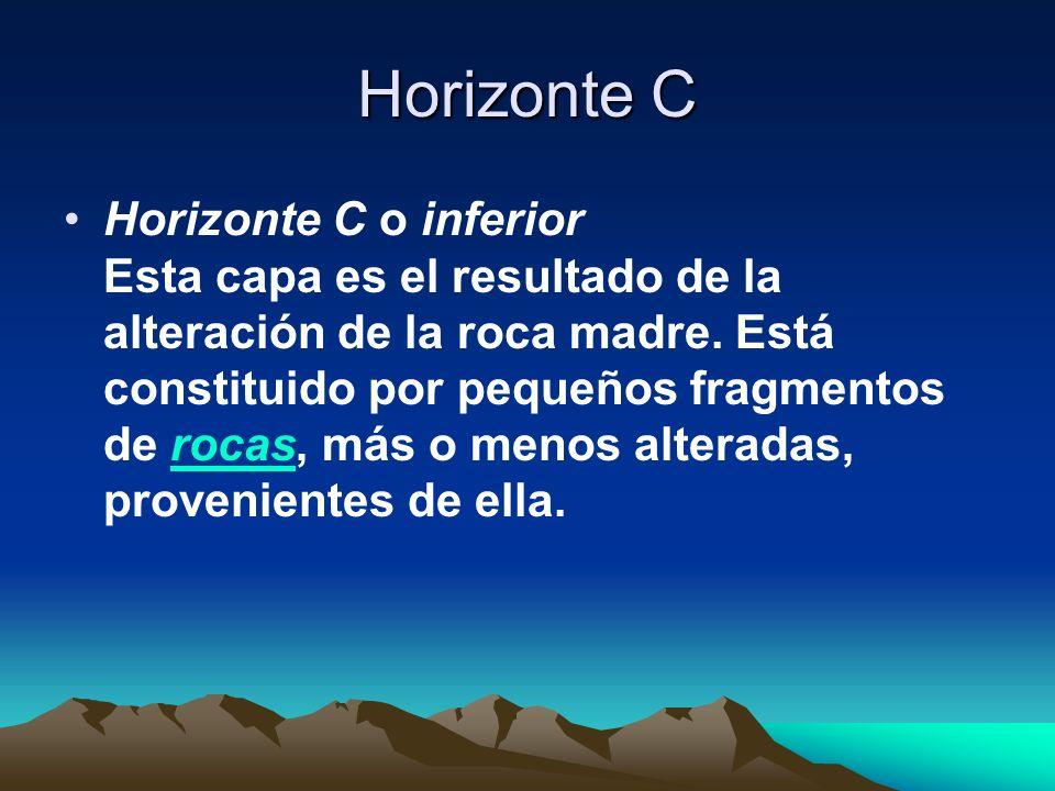 Horizonte C Horizonte C o inferior Esta capa es el resultado de la alteración de la roca madre. Está constituido por pequeños fragmentos de rocas, más