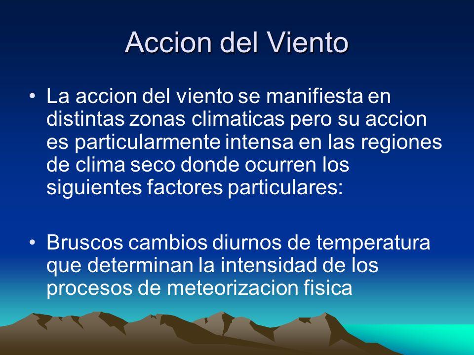 Accion del Viento La accion del viento se manifiesta en distintas zonas climaticas pero su accion es particularmente intensa en las regiones de clima