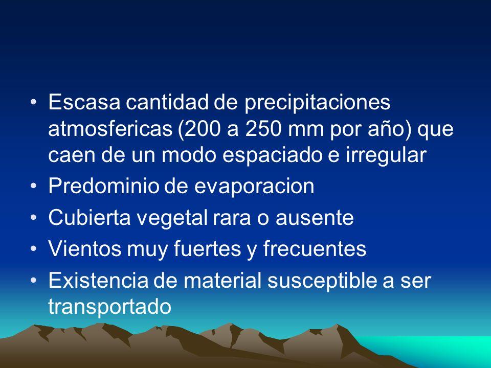 Escasa cantidad de precipitaciones atmosfericas (200 a 250 mm por año) que caen de un modo espaciado e irregular Predominio de evaporacion Cubierta ve