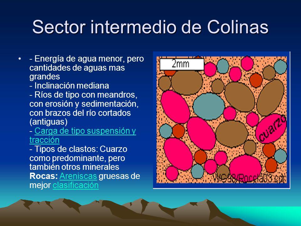 Sector de Llanura Ríos grandes, tranquillas, de baja energía, pero con mucho agua Carga en solución o suspensión Tipos de clastos: Tamaño arena de buena clasificación, casi solo cuarzo.