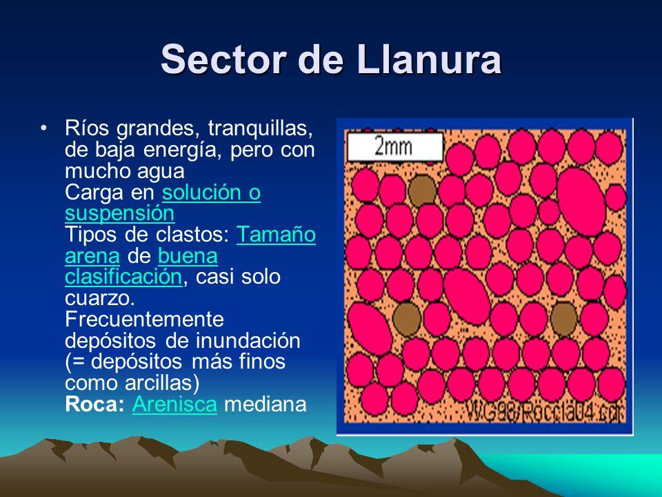 Sector de Llanura Ríos grandes, tranquillas, de baja energía, pero con mucho agua Carga en solución o suspensión Tipos de clastos: Tamaño arena de bue