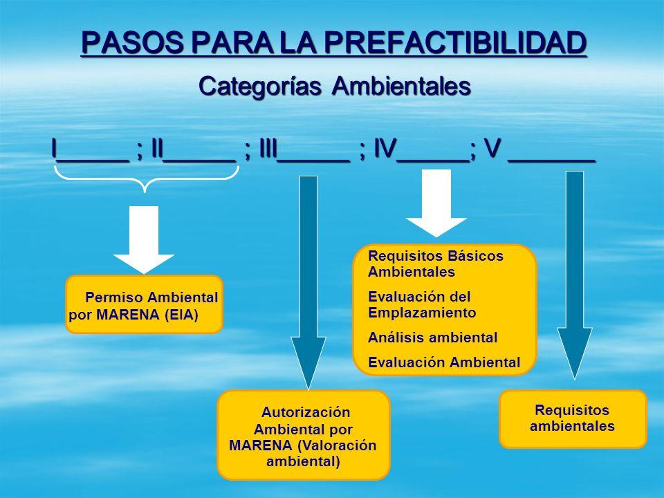 PASOS PARA LA PREFACTIBILIDAD Paso 3: Definir la categoría ambiental del proyecto. Paso 3: Definir la categoría ambiental del proyecto. Se debe defini
