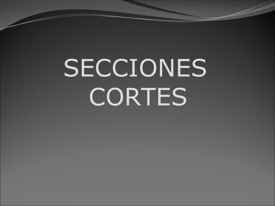 SECCIONES Al obtener las proyecciones de una pieza, las formas interiores de ésta se representan por medio de líneas de trazos.