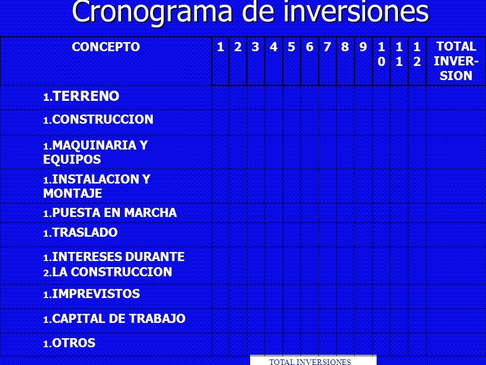 Cronograma de inversiones TOTAL INVERSIONES CONCEPTO12345678910101 1212 TOTAL INVER- SION 1. TERRENO 1. CONSTRUCCION 1. MAQUINARIA Y EQUIPOS 1. INSTAL