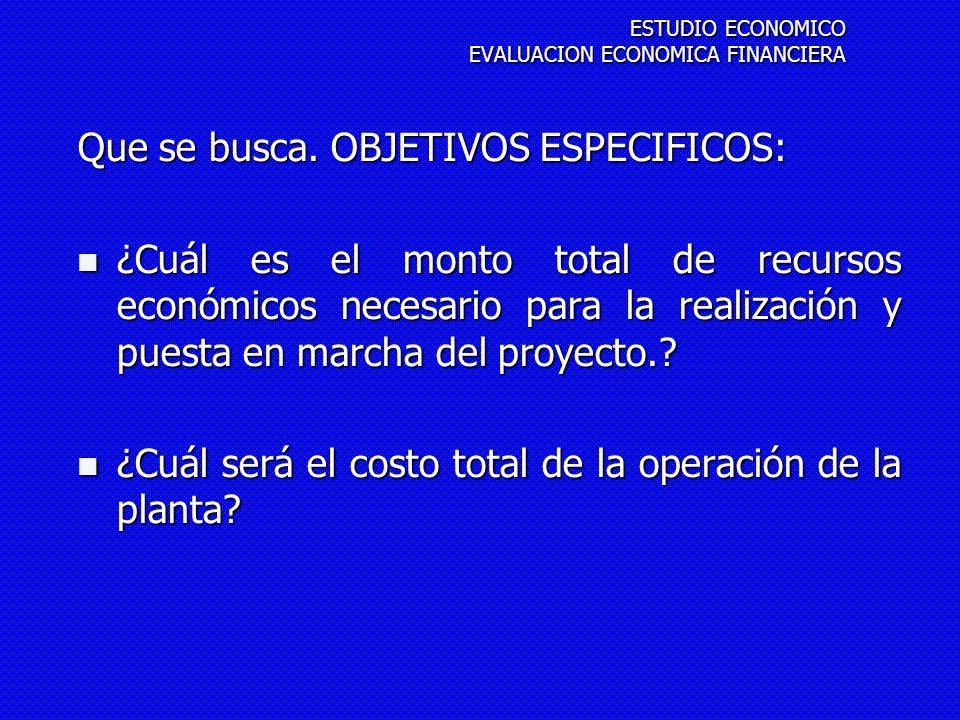 Que se busca. OBJETIVOS ESPECIFICOS: ¿Cuál es el monto total de recursos económicos necesario para la realización y puesta en marcha del proyecto.? ¿C