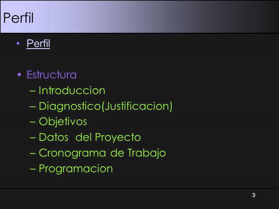 Perfil Estructura –Introduccion –Diagnostico(Justificacion) –Objetivos –Datos del Proyecto –Cronograma de Trabajo –Programacion 3