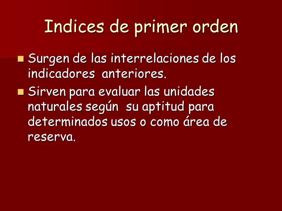 Indices de primer orden Surgen de las interrelaciones de los indicadores anteriores. Surgen de las interrelaciones de los indicadores anteriores. Sirv