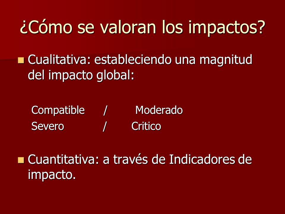 Indicadores de impacto Son elementos o parámetros que proporcionan la medida de la magnitud del impacto en su aspecto cualitativo y si es posible cuantitativo.