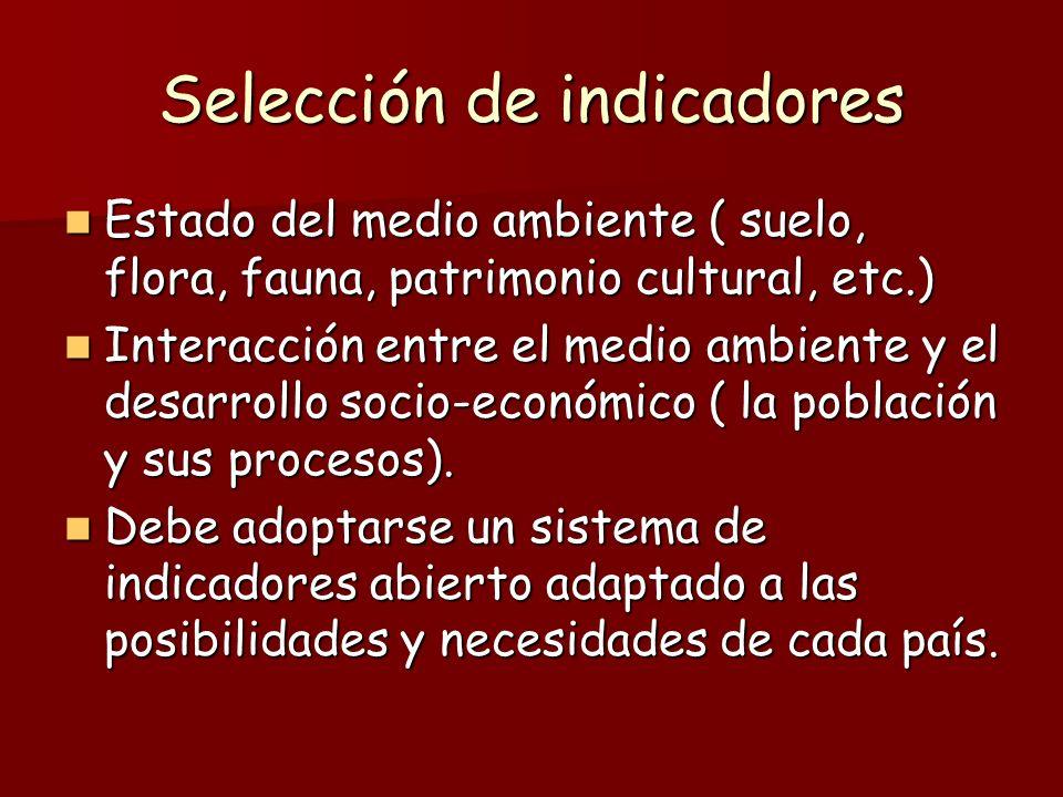Selección de indicadores Estado del medio ambiente ( suelo, flora, fauna, patrimonio cultural, etc.) Estado del medio ambiente ( suelo, flora, fauna,