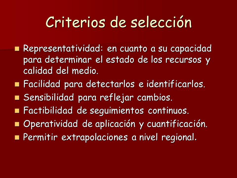 Criterios de selección Representatividad: en cuanto a su capacidad para determinar el estado de los recursos y calidad del medio. Representatividad: e