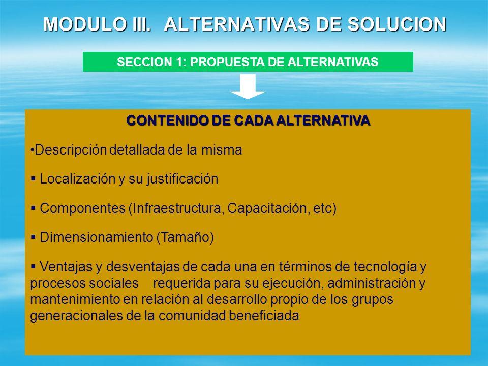 MODULO III. ALTERNATIVAS DE SOLUCION SECCION 1: PROPUESTA DE ALTERNATIVAS ALTERNATIVAS ¿LA ALTERNATIVA CUMPLE CON LOS OBJETIVOS ESTABLECIDOS? (SI/NO)
