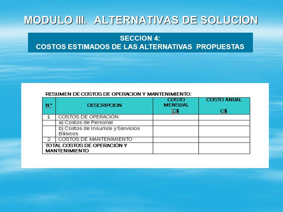 MODULO III. ALTERNATIVAS DE SOLUCION SECCION 4: COSTOS ESTIMADOS DE LAS ALTERNATIVAS PROPUESTAS Costos de Operación y Mantenimiento : Costos de Operac