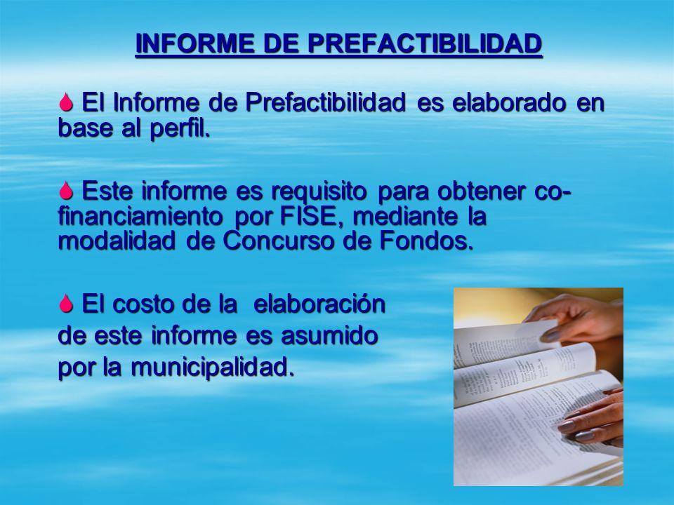 Prefactibilidad Es el primer intento de examinar el proyecto en su totalidad Es el primer intento de examinar el proyecto en su totalidad Está identif