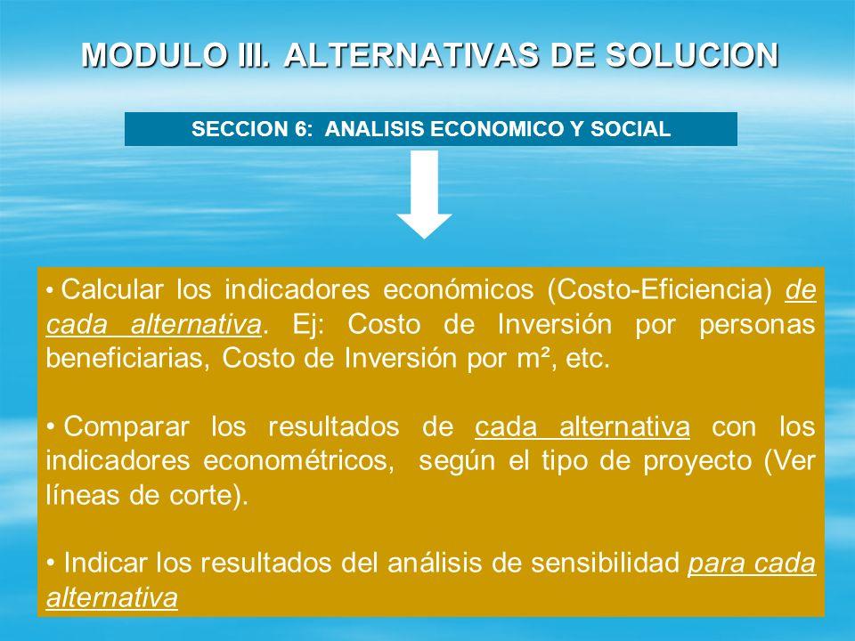 MODULO III. ALTERNATIVAS DE SOLUCION SECCION 5: ANALISIS FINANCIERO Aplica solo para los proyectos de Agua, Desechos Sólidos y Energía Rural. Estime l